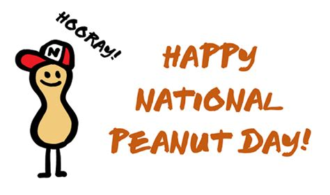 celebrate national peanut day the nutty scoop from nuts com