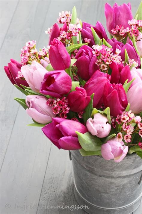 spring floral of spring and summer flowers by ingrid titti tulips