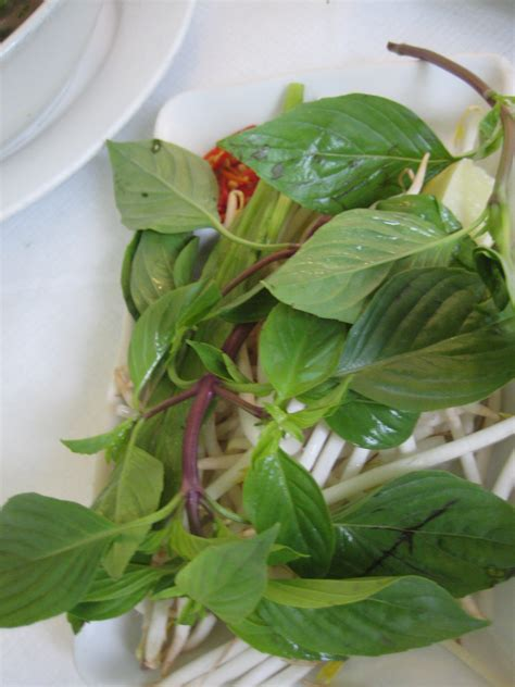 vegetables used in pho pho asian food adventures