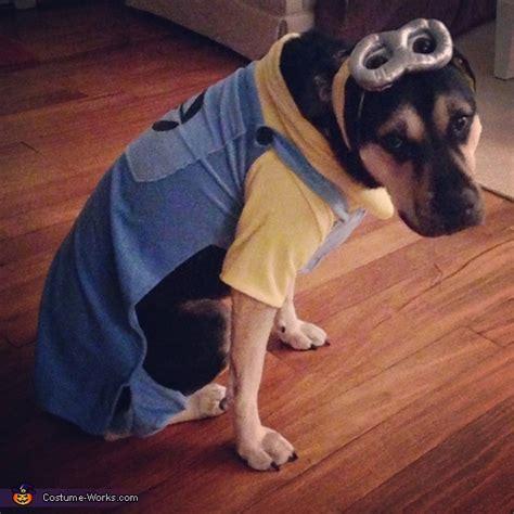 minion dogs minion costume car interior design