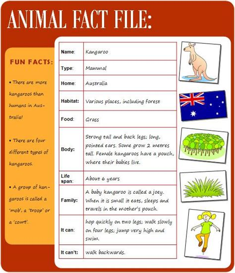fact file template ks2 animal fact file learnenglish council