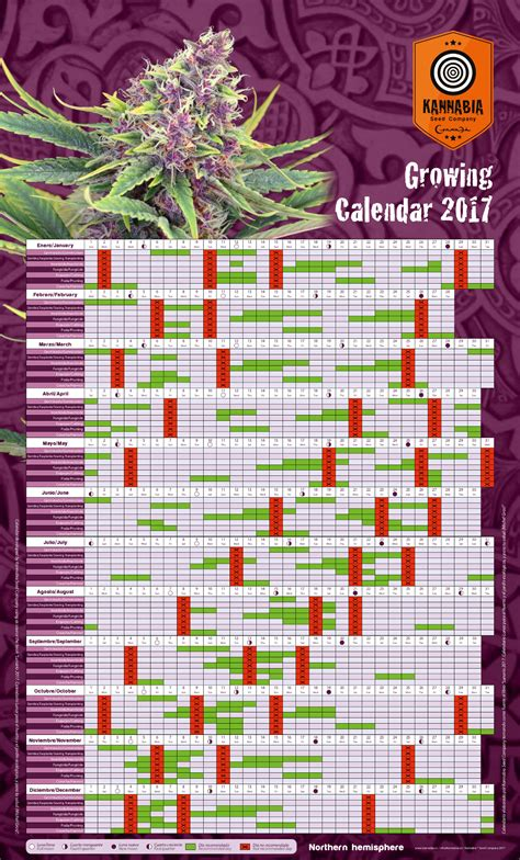 Calendario Lunar 2017 Chile Calendario Lunar Cannabico 2017