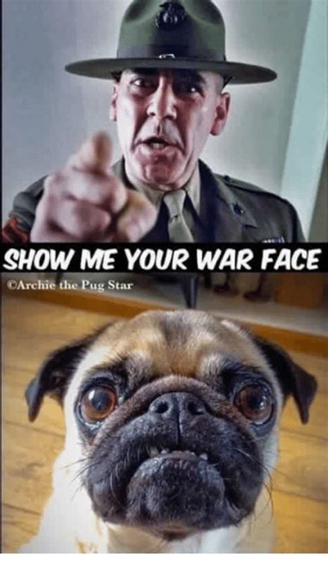 War Face Meme - show me your war face carchie the pug star meme on me me