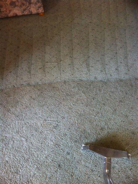steam clean rugs carpet cleaning brisbane best 1