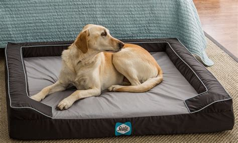 indestructible dog beds indestructible dog beds canada bedding bed linen dog beds