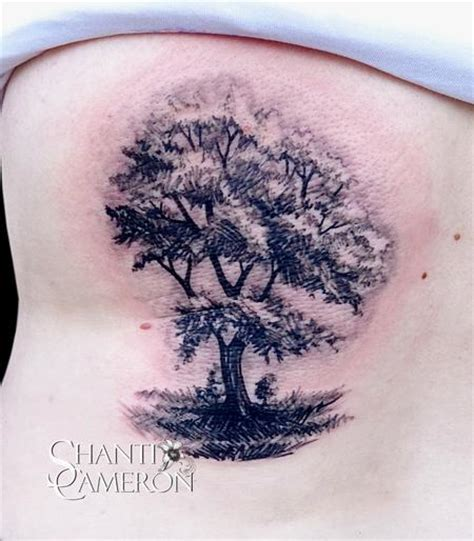 tattoo cat tree cat tattoo tattoos nature tree sketch