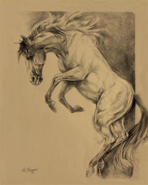 mustang horse drawing mustang rearing drawing by derrick higgins
