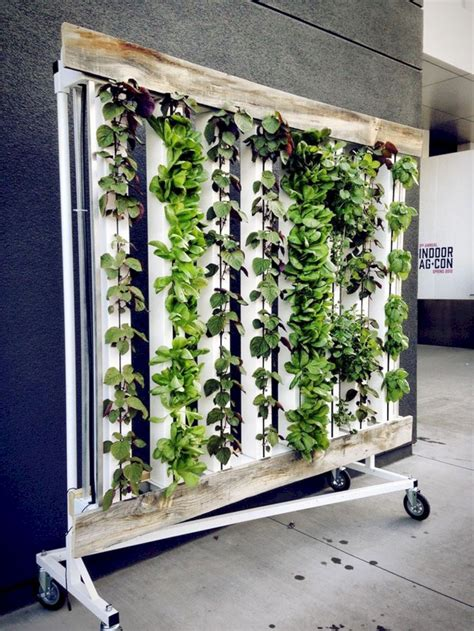 indoor hydroponic wall garden  mit bildern