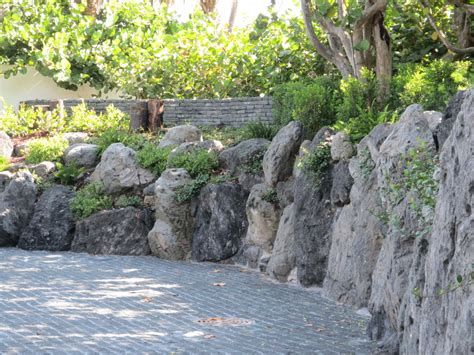 rock wall garden 24 rock wall garden designs decorating ideas design