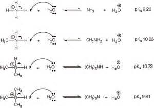 Protonated Amine Chapter 21 Amines