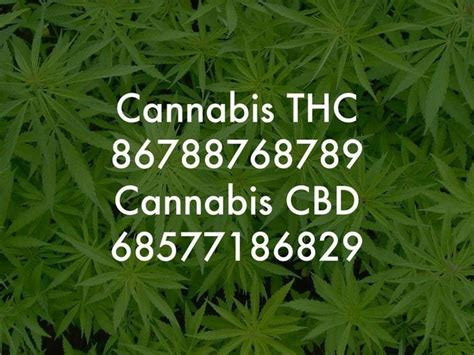 Nagalase Detox by Lloyd Mear Cannabis Numbers Healing Numbers