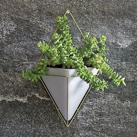 Planter Wall Mount by 20 Best Ideas About Wall Mounted Planters On