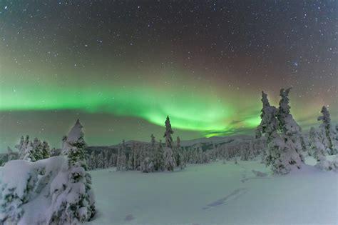 chena springs northern lights northern lights near chena springs alaska usa