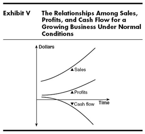 sle cash flow for non profit a small business is not a little big business