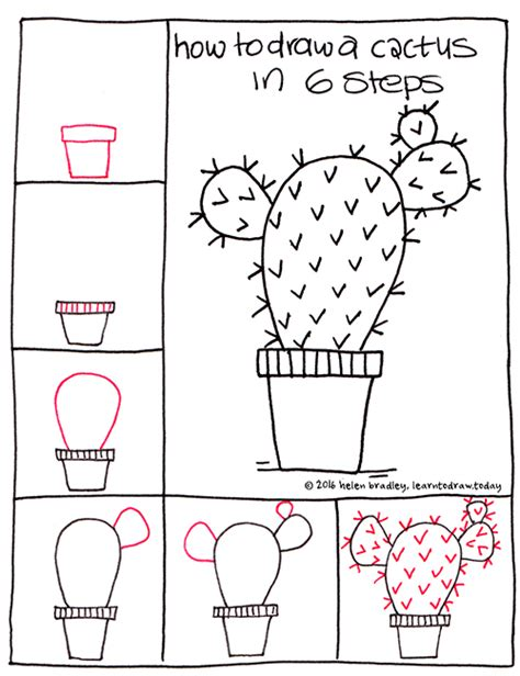 learn doodle draw learn to draw a cactus in 6 steps learn to draw