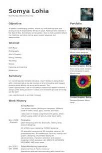 pintor ejemplo de curr 237 culum base de datos de visualcv
