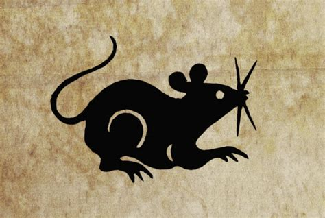 new year 2016 predictions for rat new year 2016 rat predictions 28 images horoscope rat