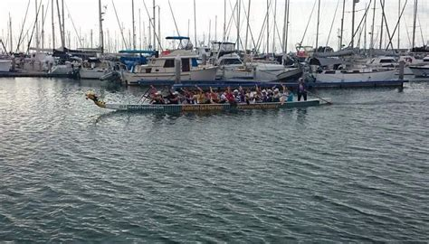 boat club manly come try day manly dragon boat club brisbane
