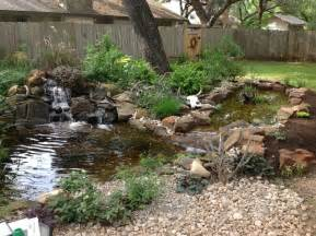 michael s backyard pond with waterfall and bog filter traditional landscape austin by