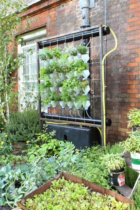vertical hydroponic garden outside things to do