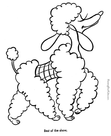 coloring pages poodle dogs pictures to color coloring home