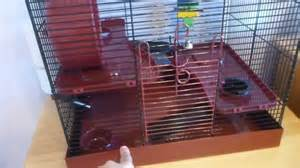 syrian hamster cage youtube