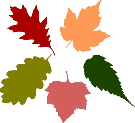 file maple leaf svg free svg file autumn fall leaves crafting happy and