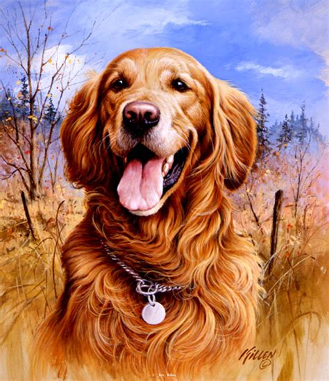 quot that s my quot golden retriever painting by jim killen