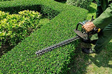 professional lawn care services durham nc belton s
