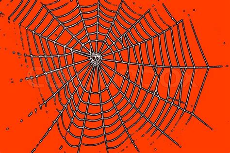 orange pattern web spider web pattern for halloween orange color stock