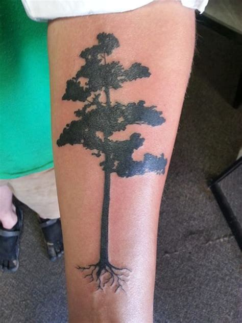 fir tree tattoo pine fir tree tattoos inspiring tattoos