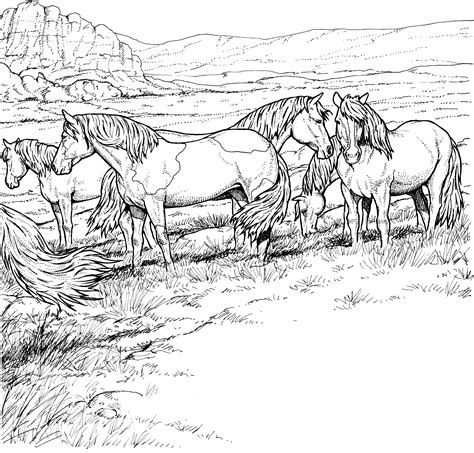 wild horse coloring page 81 herd of horses coloring pages inspiring horse