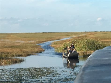 everglades airboat tours reviews miami 1000 everglades photos miami fl airboat reviews