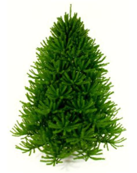 buying guide for artificial christmas tree artificial trees made in usa