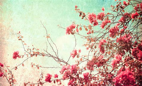 vintage backgrounds vintage floral background 183 free cool hd