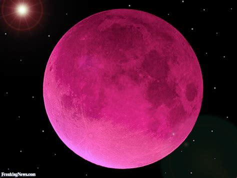 what is a pink moon pink moon related keywords pink moon long tail keywords