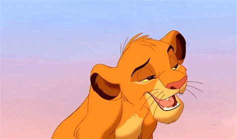 the lion king stitch gif find share on giphy the lion king aladdin gif find share on giphy