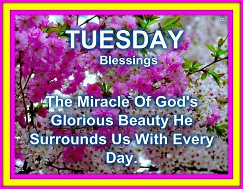 tuesday blessings  miracle  gods glorious beauty