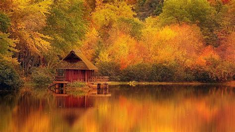 Landscape Pictures Autumn Autumn Fall Landscape Nature Tree Forest Wallpaper