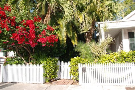 Garden And Gun Key West Key West Houses And Gardens Photograph By Susanne Hulst
