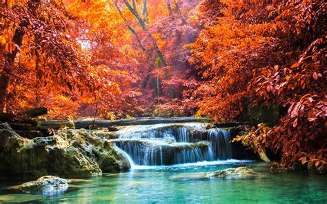 nature landscape waterfall forest fall sun rays