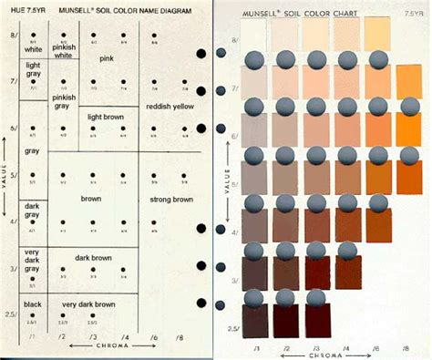 munsell color book make your own soil color book dirtartful