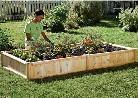 Outdoor Raised Planters by Hardwood Raised Bed Garden Kit Traditional Outdoor
