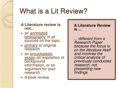 what is literature review in dissertation dissertation review process