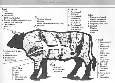 meat sections of a cow 38 best images about what part of a cow chart on pinterest a cow charts and beef cuts chart