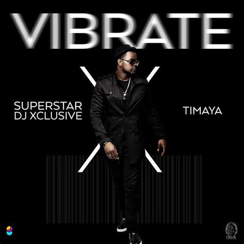 download mp3 dj xclusive cash only download mp3 mp4 dj xclusive ft timaya vibrate
