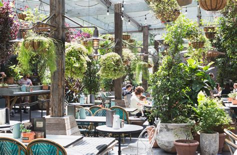 Potting Shed Alexandria by Diggin For Culinary Gold At The Potting Shed Sydney