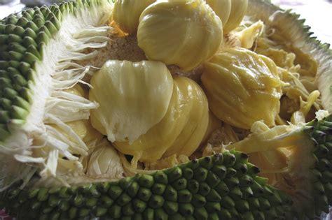 protein jackfruit how to turn your favorite foods vegetarian