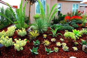california drought tolerant landscaping fire safe landscaping ready for wildfire with finest