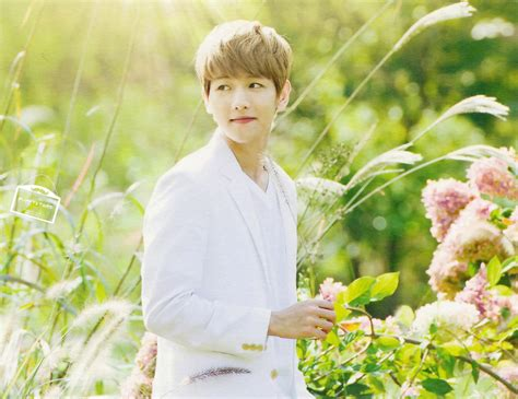 wallpaper exo nature republic hq scans exo for nature republic product catalogue